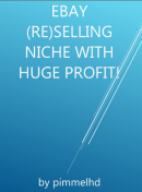 Ebay (re)selling niche with huge profit!